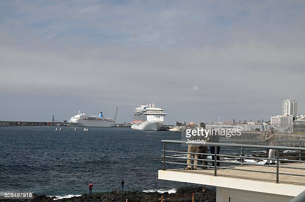Ponta Delgada Birders and Harbor