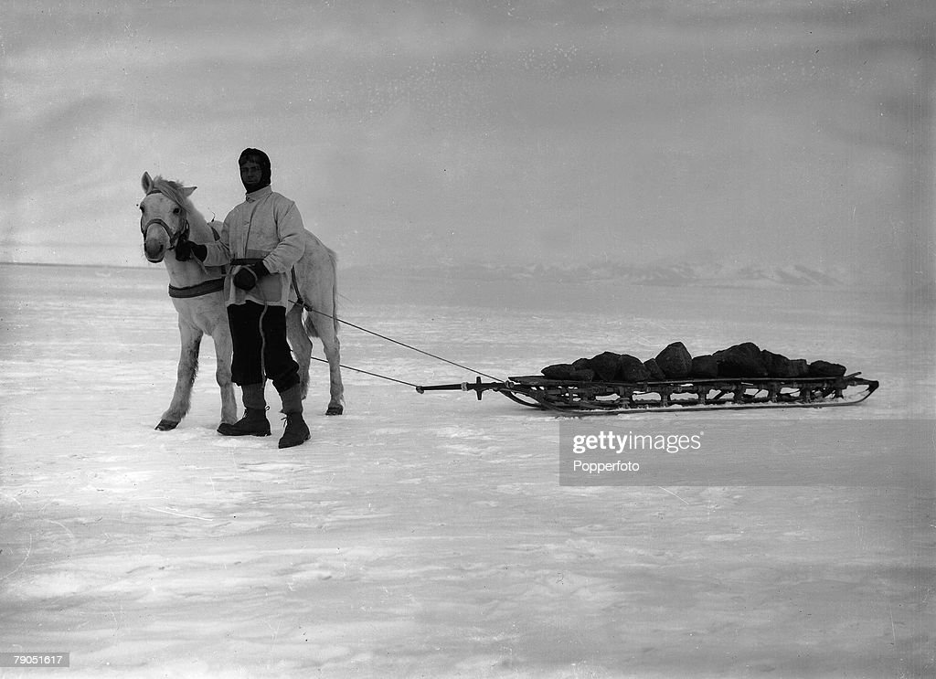 H,G Ponting, Captain Scott+s Antarctic Expedition 1910 - 1912, 14th January, 1911, Mather pictured with a horsepulled sledge, loaded with ballast to the ship