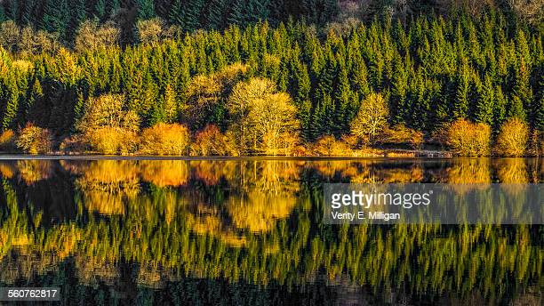 Pontsticill Reservoir, Brecon Beacons, South Wales