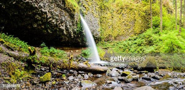 Pony Tail Falls, Columbia River Gorge, Oregon : Stock Photo