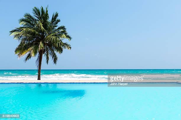 Pool by idyllic beach, Sri Lanka