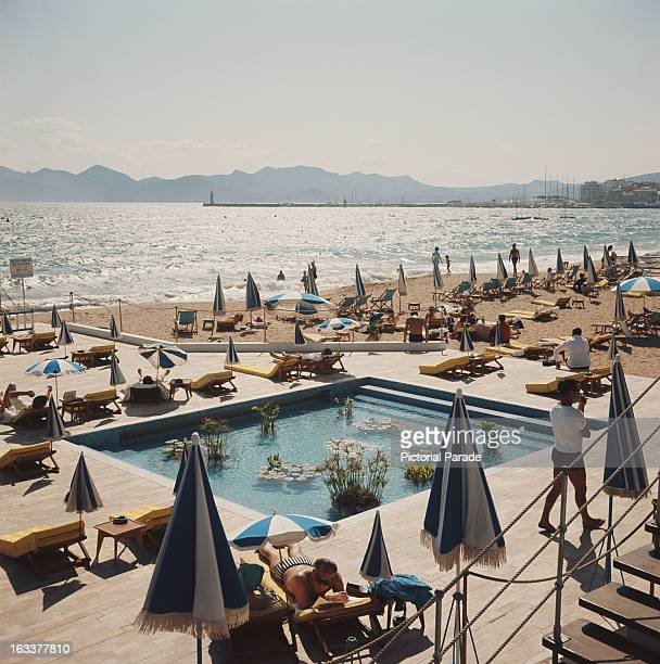 A pool of waterliles on the beach at Cannes France circa 1970