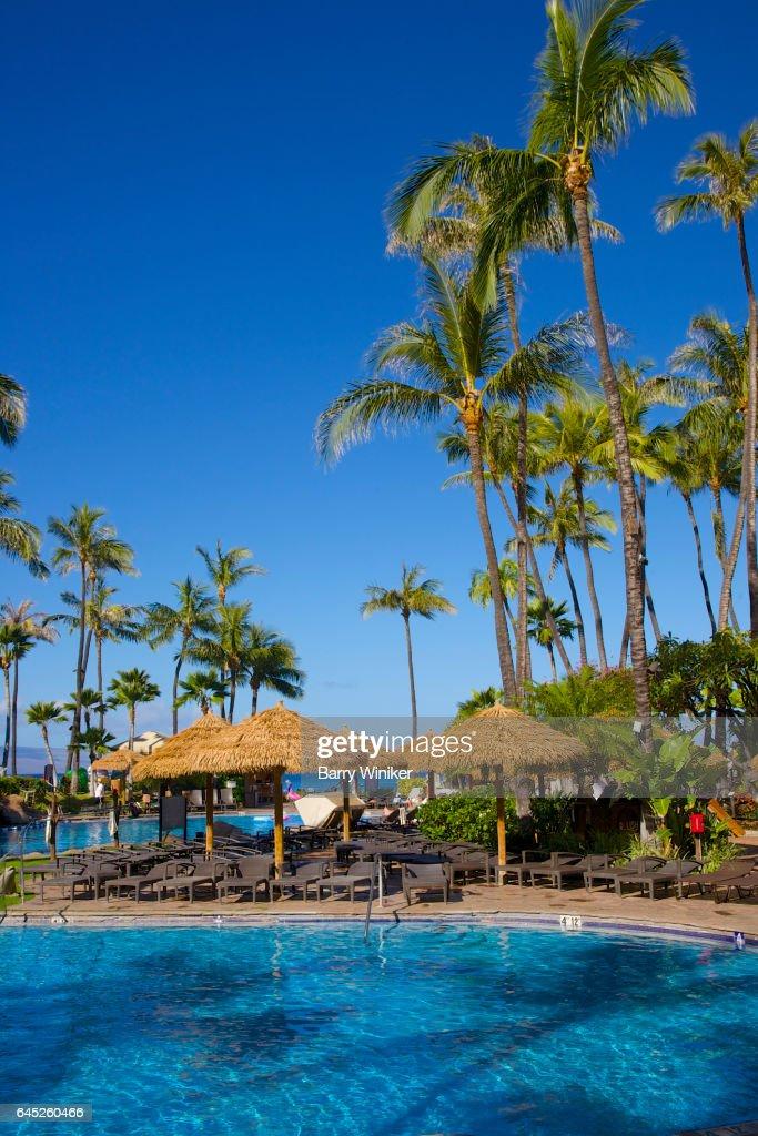 Pool, palapas and palm trees, Maui, Hawaii : Foto de stock