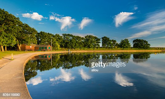 Poole Park in Dorset : Stock Photo