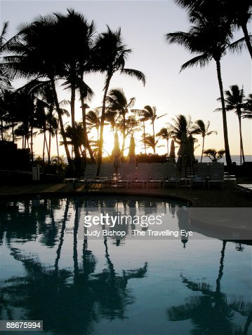 Poolside sunset with palm trees