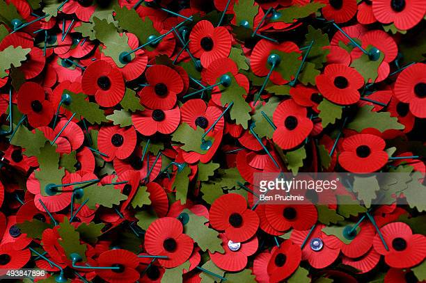 Poppies are packaged for shipping by volunteers at the The Royal British Legion Poppy Appeal Headquaters on October 14 2015 in Aylesford England The...