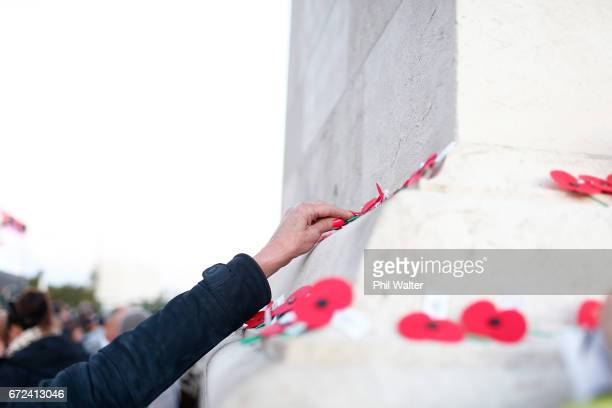 Poppies are placed on the Cenotaph following the Dawn Service at the Auckland War Memorial Museum on April 25 2017 in Auckland New Zealand In 1916...