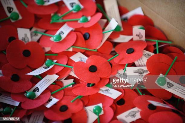 Poppies are seen in a box at the Royal New Zealand Returned and Services' Association Poppy Factory on March 27 2017 in Christchurch New Zealand...