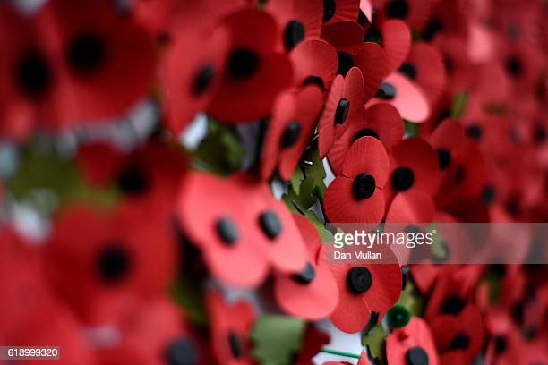 Poppies are seen on the wall ahead of the Rememberance Day outside the stadium prior to kick off during the Premier League match between Tottenham...