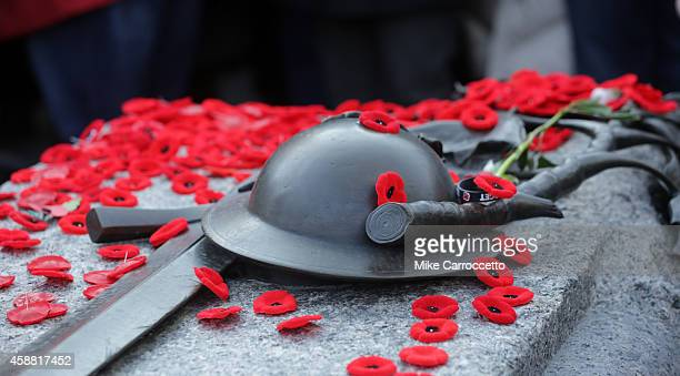 Poppies sit on the Tomb of the Unknown Soldier after this morning's Remembrance Day ceremony November 11 2014 in Ottawa Canada An estimated 50000 or...