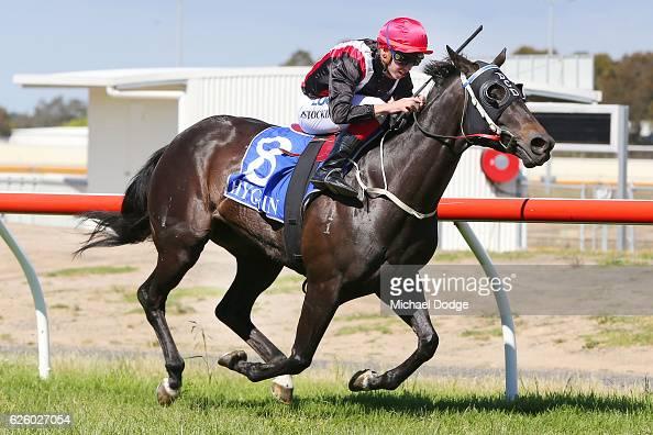 Poppy Talk ridden by Brandon Stockdale wins Latrobe City BM64 Handicap at Traralgon Racecourse on November 27 2016 in Traralgon Australia
