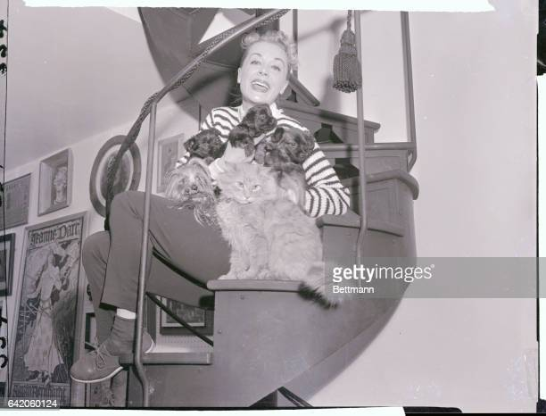 Popular stage and screen star June Havoc who plans to leave for the west coast soon found that airlines and trainlines take a dim view of carrying...