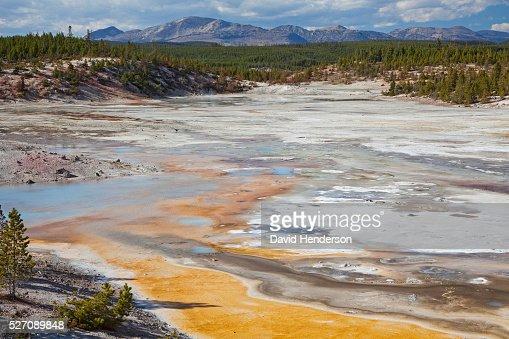 Porcelain Basin, Wyoming, USA : Foto stock