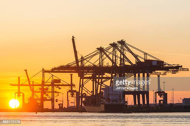 Port cranes in sunset