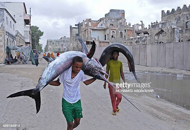 Porters carry the carcasses of a marlin and a shark on their heads to the local market in Hamarweyne near the port of Mogadishu on the Indian Ocean...