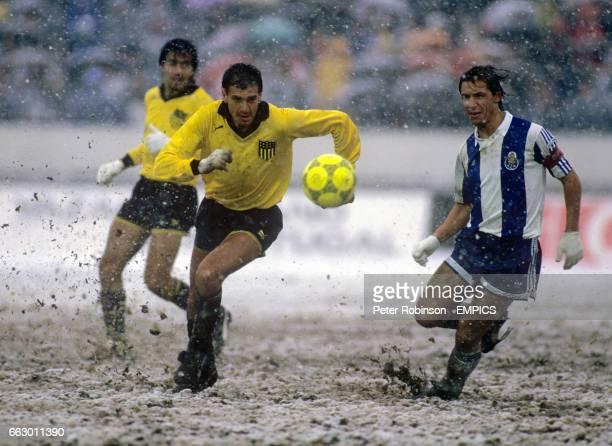 Porto's Fernando Gomes in action