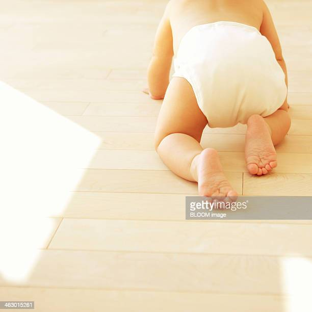 Portrait Of A Baby Crawling