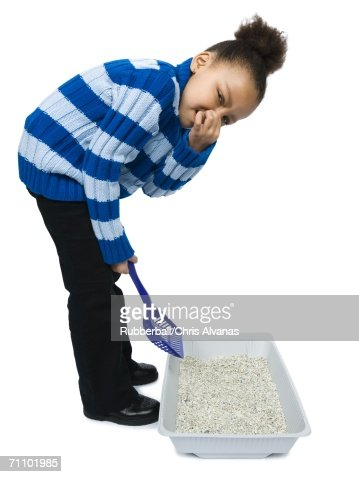 Litter Box Stock Photos And Pictures Getty Images