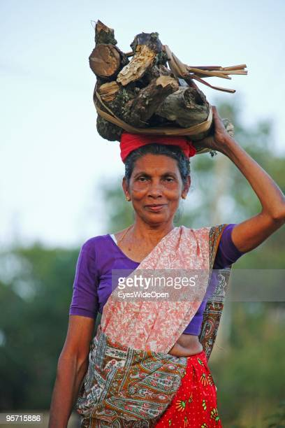 Portrait of a local indian woman carrying firewood on her head in Kumily on December 31 2009 in Kumily near Trivandrum Kerala India