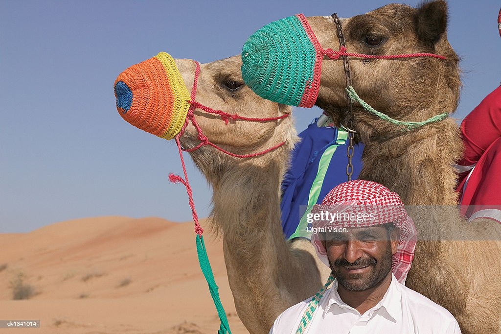 Portrait of a Man Standing in Front of Two Muzzled Camels in the Desert
