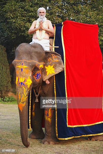 Portrait of a priest riding an elephant