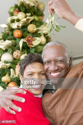 Portrait of a Smiling, Senior Couple Standing Under the Mistletoe : Stock Photo