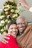 Portrait of a Smiling, Senior Couple Standing Under the Mistletoe