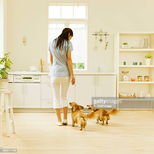 Portrait Of A Woman With Dogs In Kitchen