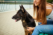 Portrait of a young girl with a dog in the park. German shepherd with a woman.
