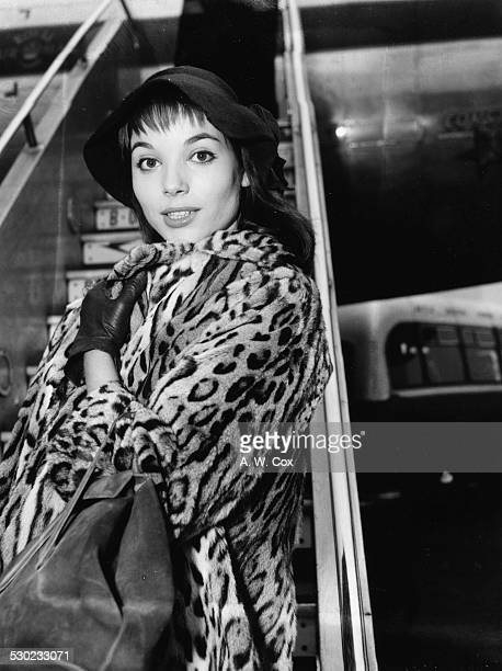 Portrait of actress Elsa Martinelli wearing a hat and leopard print coat as she arrives at London Airport February 17th 1956