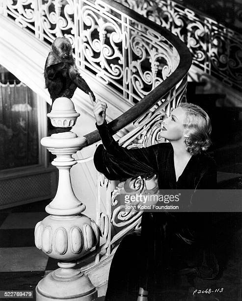 Portrait of actress Madeleine Carroll sitting on a stairwell and playing with a monkey with Paramount Pictures 1936