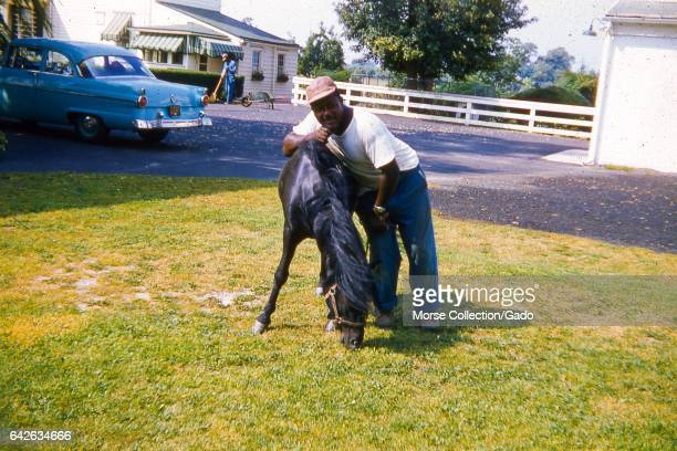 Portrait of an African American man posing with a young black bridled horse in a grassy yard June 1959 A blue car is parked in the driveway behind...