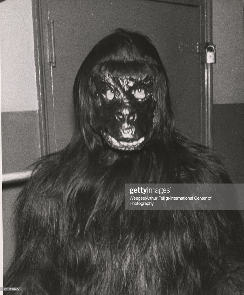 Portrait of an unidentified person dressed in an ape or gorilla costume who poses in & In A Monkey Suit Pictures | Getty Images Pezcame.Com