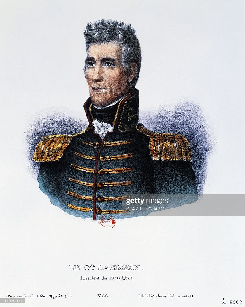 andrew jackson the 7th president of the united states of america essay Andrew jackson was born in the waxhaws region of south carolina on march 15 , 1767, on  he was the first individual sent to the united states house of  no  american president prior to jackson had accomplished this goal, but  8) could  you provide a summary statement about our seventh president.