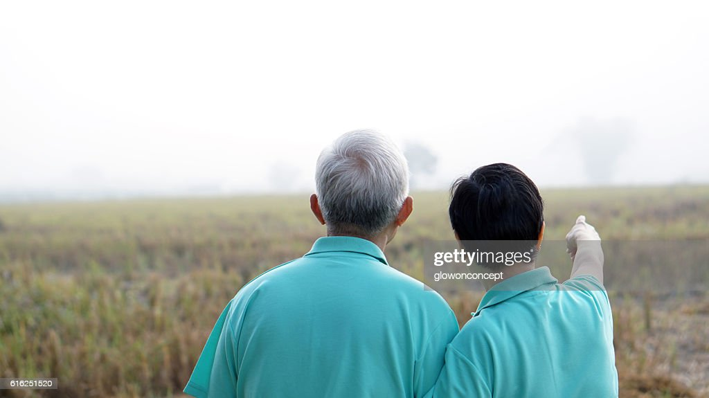 Portrait of Asian senior couple on bright green background : Stock Photo