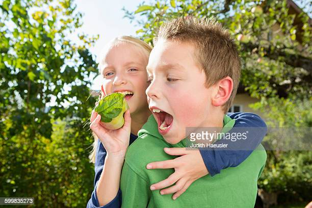 Portrait of boy and sister with picked apple from orchard