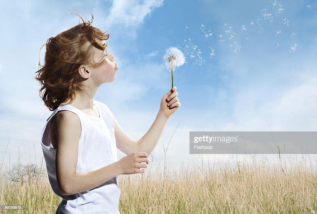 Portrait of boy blowing dandelion clock : Stock Photo