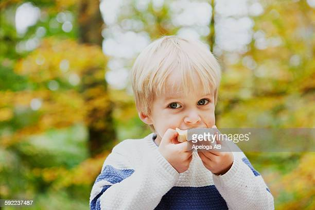 Portrait of boy eating bread in forest