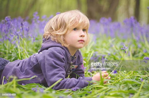 Portrait of boy (6-7) lying amid bluebells