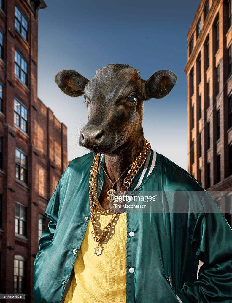 Hip Hop King, urban