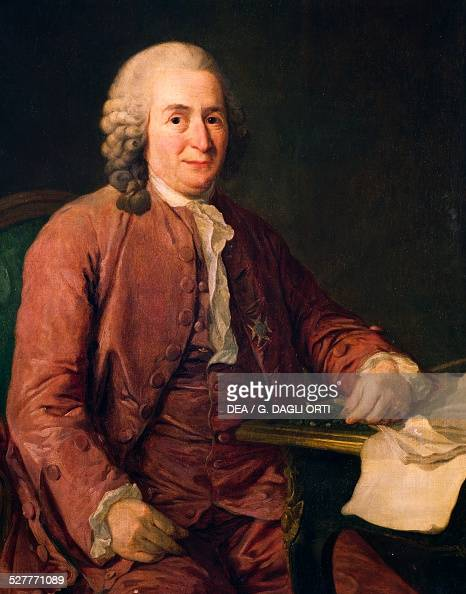 linnaeus stock photos and pictures getty images. Black Bedroom Furniture Sets. Home Design Ideas