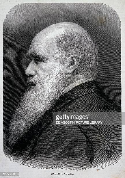 Portrait of Charles Robert Darwin British naturalist and geologist engraving from L'Illustrazione italiana February 8th 1880