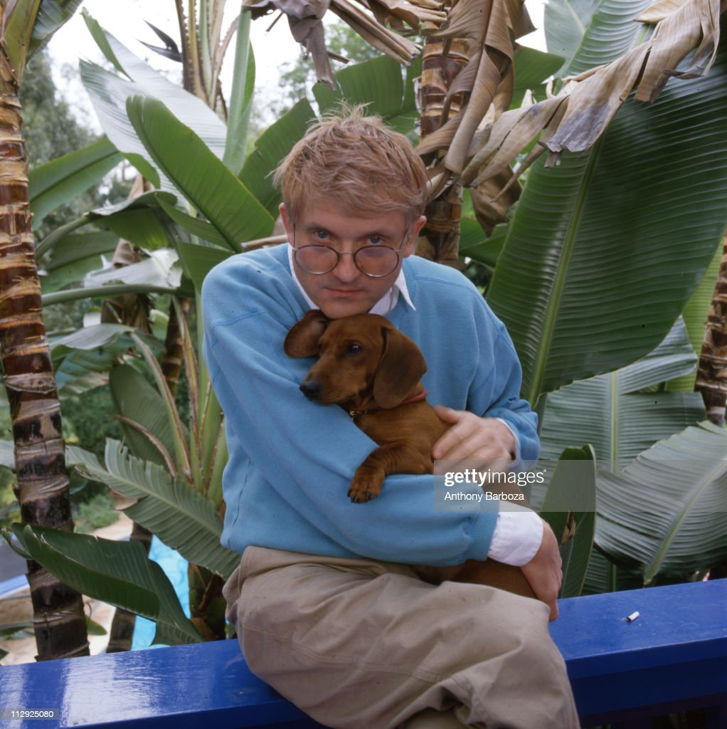 Portrait of English painter David Hockney wearing a light blue sweatshirt and holding one of his beloved dachschunds Los Angeles CA late twentieth...