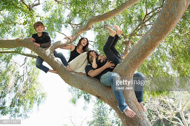 Portrait of family with two boys climbing on park tree