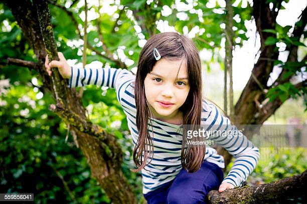 Portrait of girl climbing in a tree