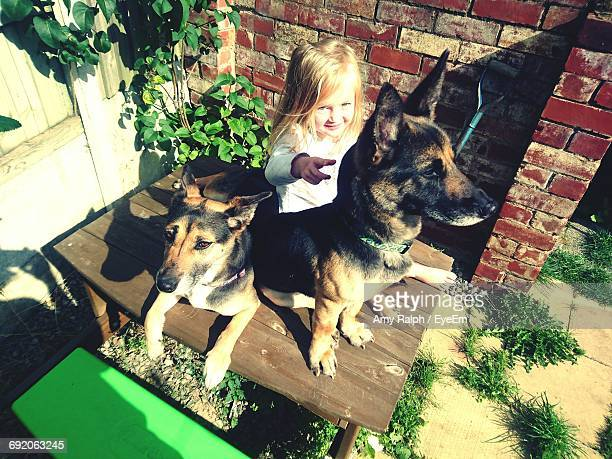 Portrait Of Girl Sitting With Dogs On Wooden Table At Backyard