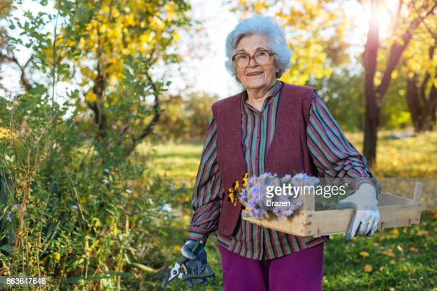 Portrait of healthy senior woman with flowers and gardening gloves