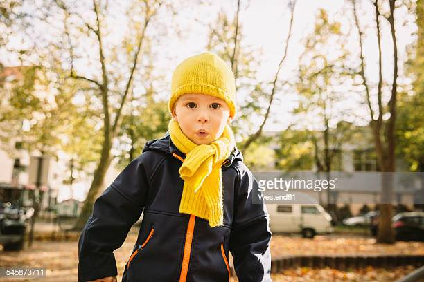 Portrait of little boy with yellow scarf and hat