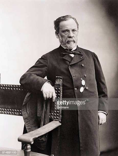 Portrait of Louis Pasteur French Chemist Undated photograph by Nadar BPA2# 4337