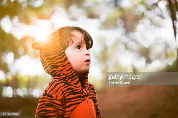 Portrait of male toddler in tiger suit alone in woods